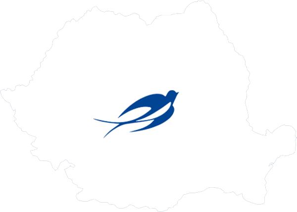 Lesaffre Romania